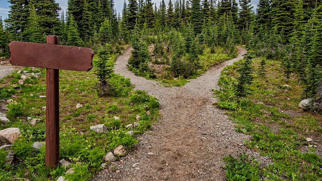 Featured image a path with a fork in the road for decision making